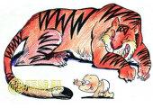 出生的牛犊不怕虎是什么意思