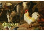 属羊和属鸡的相冲吗