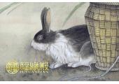 属兔的人住几楼好