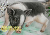 属猪的是哪一年出生的