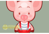 属猪的今年2018年多大岁数