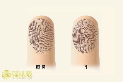 揭密:传统手相指纹算命法