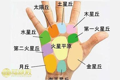 手相九大掌丘的秘密,它们代表什么?