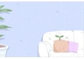 十二生肖今日运势查询【2018年11月19日】