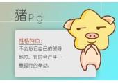 给属猪带财的微信头像是什么样的