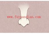 鹰嘴鼻标准照片 鹰嘴鼻是什么样子