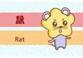 1996年属鼠几月出生好 属鼠的人命运
