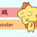 今日生肖相冲查询 2019年2月17日