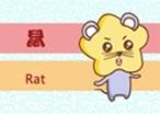 72年属鼠人48岁以后命运如何