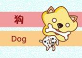 几月的狗最好命 不同月份出生属狗人的命运