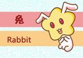 今日生肖相冲查询 2019年2月23日