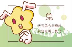 1987属兔的吉祥数字是什么