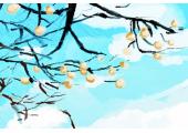 祖坟山上长了一棵大构树该怎么处理