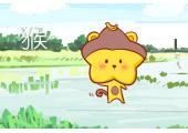 今日生肖相冲查询 2019年5月11日