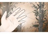 手掌生命线旁边多出来的一条线是什么线
