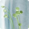卧室植物摆放风水禁忌 不宜桃花