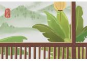 家里盆栽养什么好风水 为什么