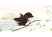 燕子进家筑巢有什么预兆 燕子不进苦门人家