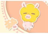高字是什么生肖 和猪有分不开的联系