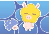 属猪的幸运物是什么 能带来好运吗