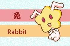适合属兔人的微信头像有什么特征