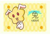 本周生肖兔运势(2.17-2.23)