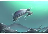 梦到很多小乌龟是什么意思 预示什么