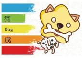 属狗喜欢什么颜色 米色最吉祥