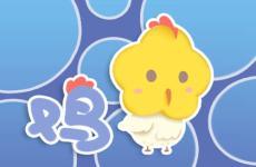 为什么说属鸡的不好 属鸡运势怎么样