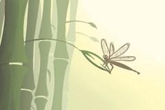 什么植物最有灵性 风水怎么样