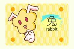 本周生肖兔运势(4.27-5.3)