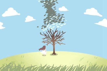 十大吉祥之树