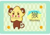 属猴的今年多少岁