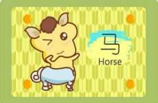 属马的命运大全 属马几月出生最好