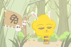 属兔人几点出生命最好 下午一点左右好