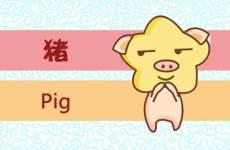 本周生肖猪运势(6.22-6.28)