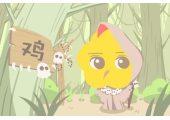 本周生肖鸡运势(6.29-7.5)