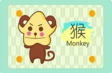 属猴人几点出生最好命运 十一点好