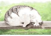 招财猫颜色寓意风水 金猫招财