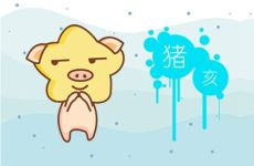 本周生肖猪运势(7.13-7.19)