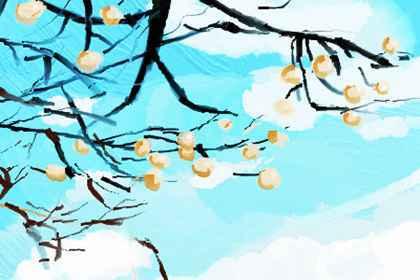 海棠树有乌鸦筑巢好吗