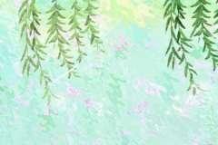 海棠树能种在财位吗 是可以的