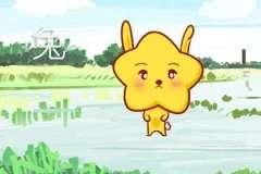 本周生肖兔运势(7.27-8.3)