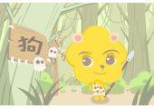 本周生肖狗运势(8.10-8.16)