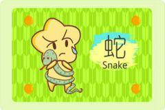 属蛇人几年几岁了 具体看出生年份