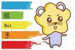 2020年农历十月出生的宝宝是什么命 也是金鼠之命