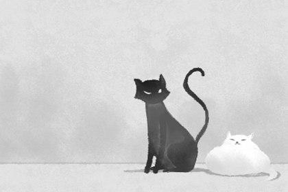 猫到家里来