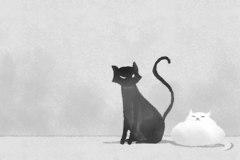 晚上见猫有什么兆头 晚上家中来猫带财运