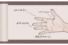 男人有福气的手型 贵气的人手相