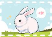 87年属兔一生婚姻缘分 婚姻稳定有贵人